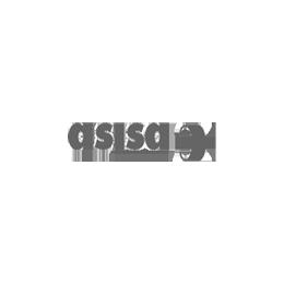 AsisaBcuadcuad_gris.png