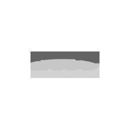 DKV_Bcuadcuad_gris.png