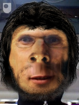 Devolve yourself is a funky little tool to give you an idea of how you would look as one of your distant ancestors. Upload a photo and you can see yourself as you would have looked up to 37 3.7 million years ago, in short hairy. Check it out and if anyone wants me to post their devolved selves email me and I will get it up here. http://www.open.ac.uk/darwin/devolve-me.php
