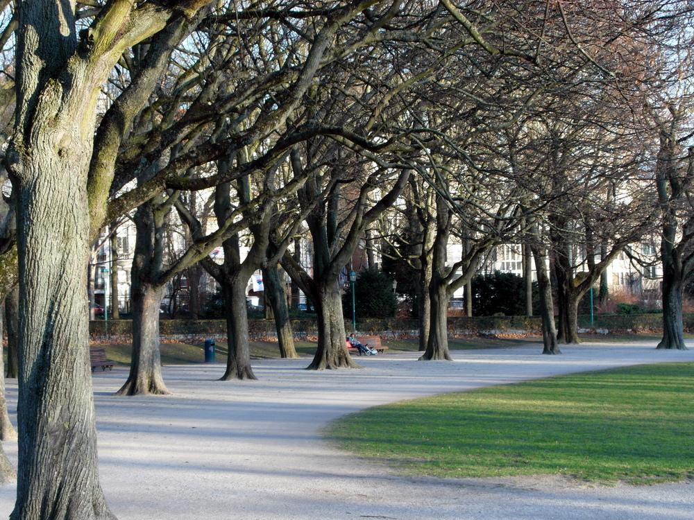 Parc Cinquantenaire_SAM_1196.JPG