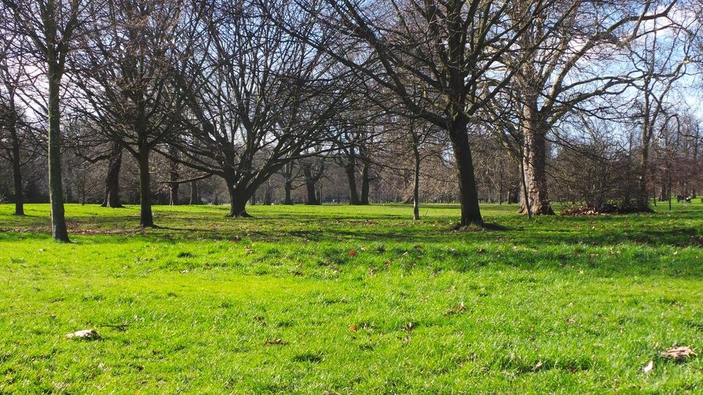 Kensington Gardens.jpeg