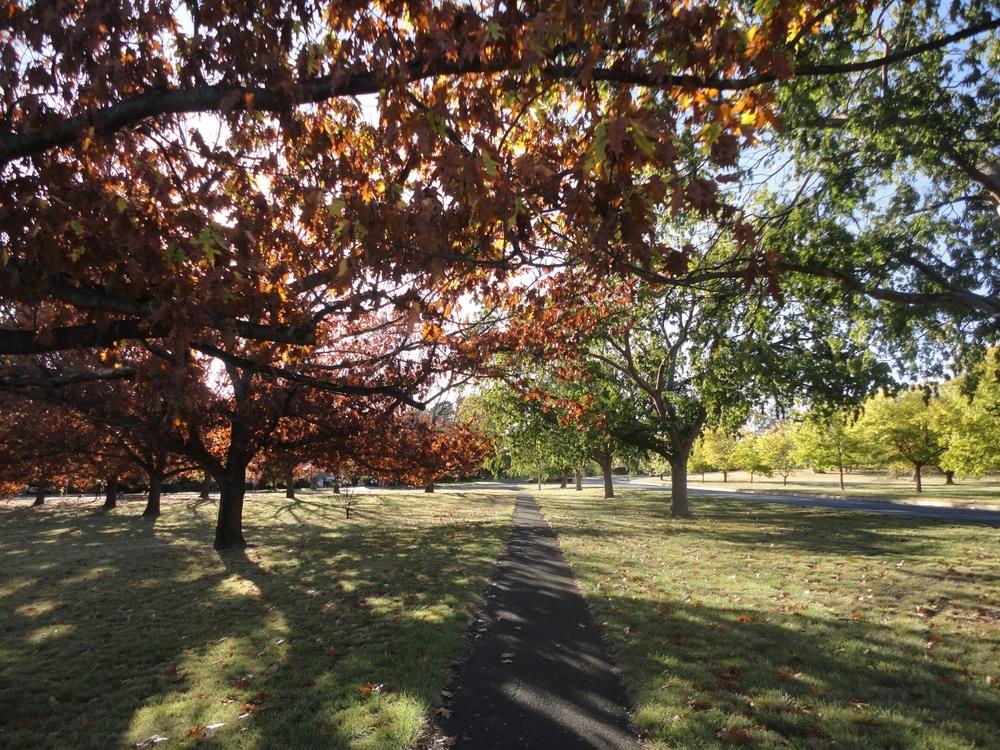 autumn (1280x960).jpg