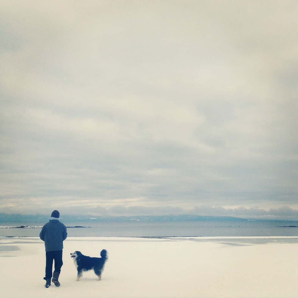 Lake Champlain in winter.JPG