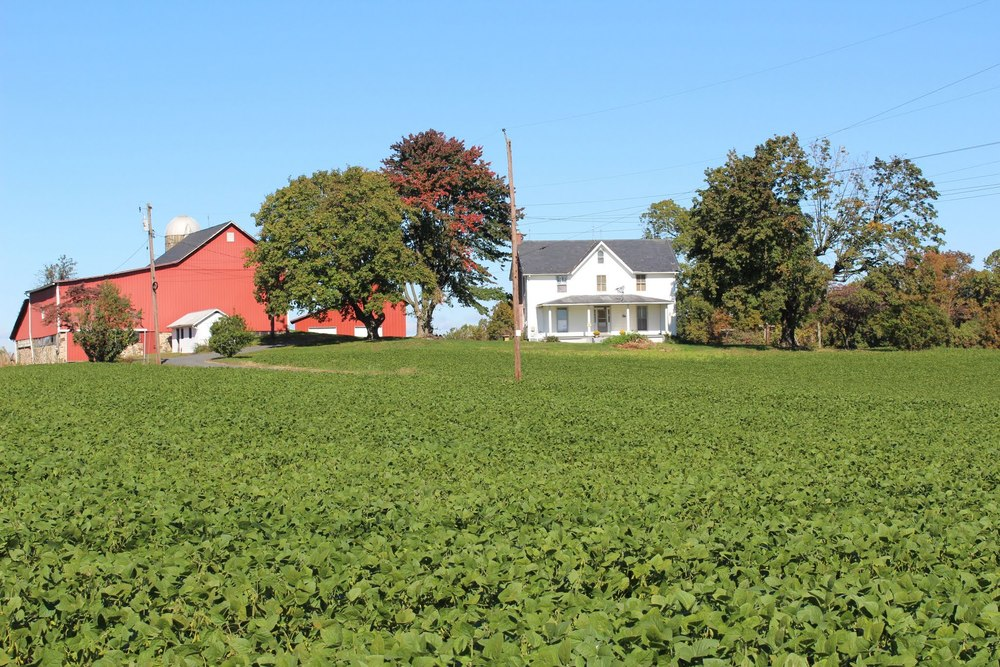 farm n of Perry Hall-001.jpg
