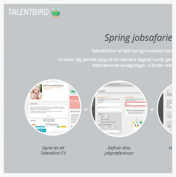 Talentbird_users_website.png