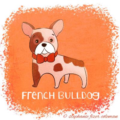 french bulldog.jpg