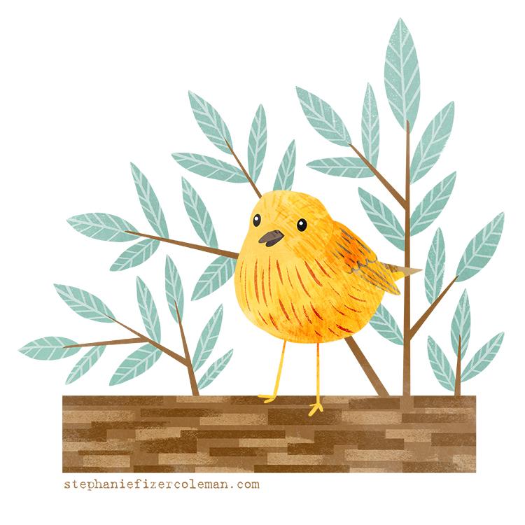 21 yellow warbler.jpg