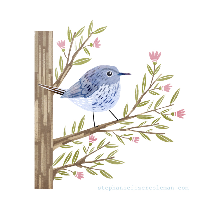 31 blue gray gnatcatcher.jpg