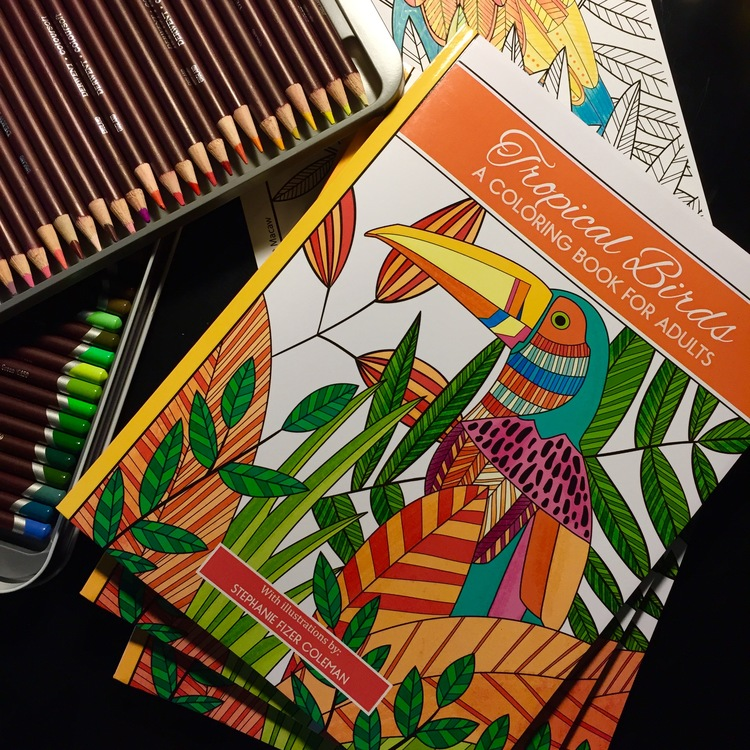 And Although I Ran Into Significant Snags In The Process With Garden Tea Party My First Coloring Book Tropical Birds Was Much Smoother