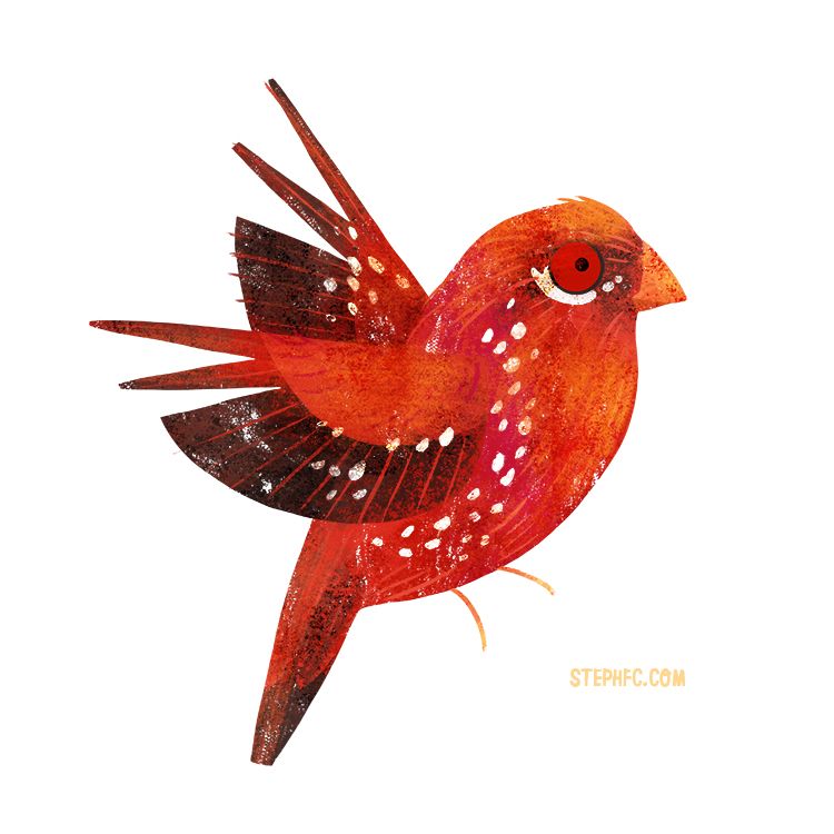 strawberry finch.jpg