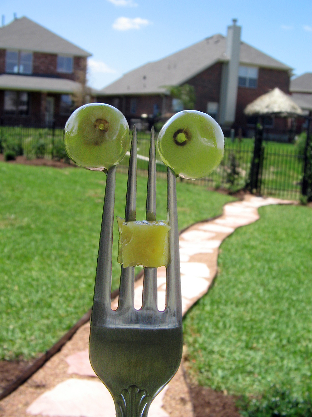 Forked Fruit Monster.jpg