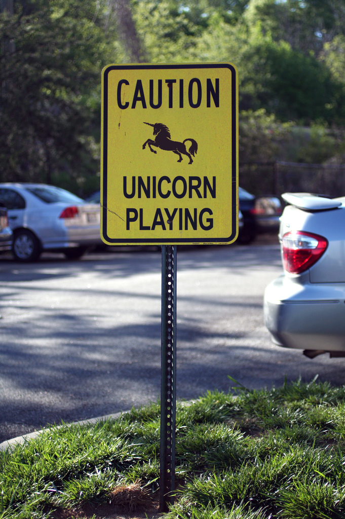 Unicorn Playing.jpg