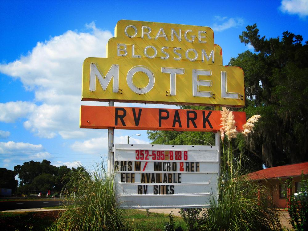 Citra Florida.jpg