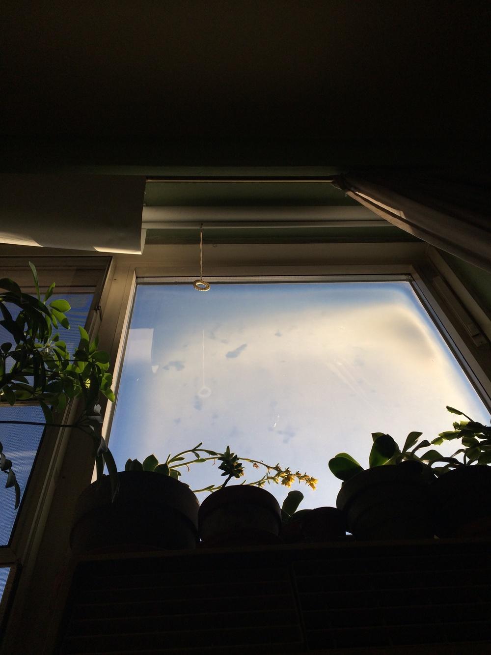 Kate Wichlinski Warm Sun