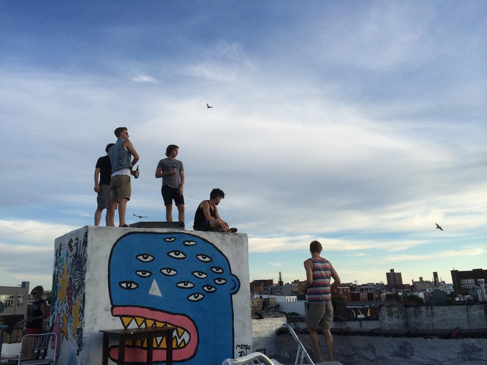 Brooklyn rooftops