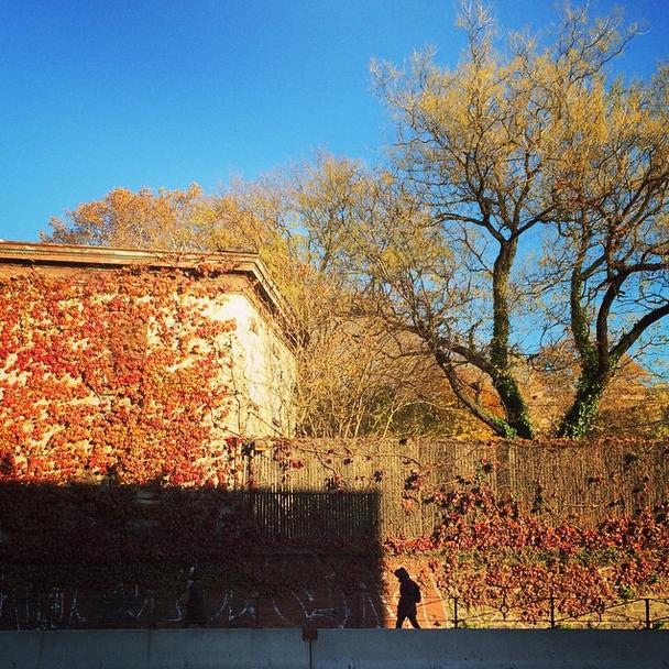 kate wichlinski Nov 2 2014