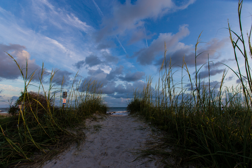 ©Jennifer Bailey 2013 Edisto Beach, South Carolina