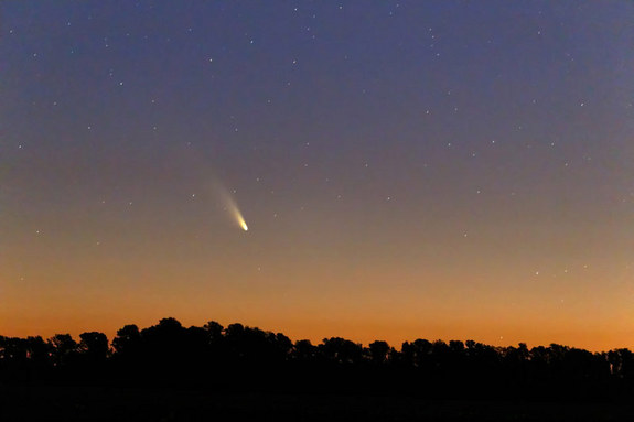 comet-panstarrs-argerich-1.jpg