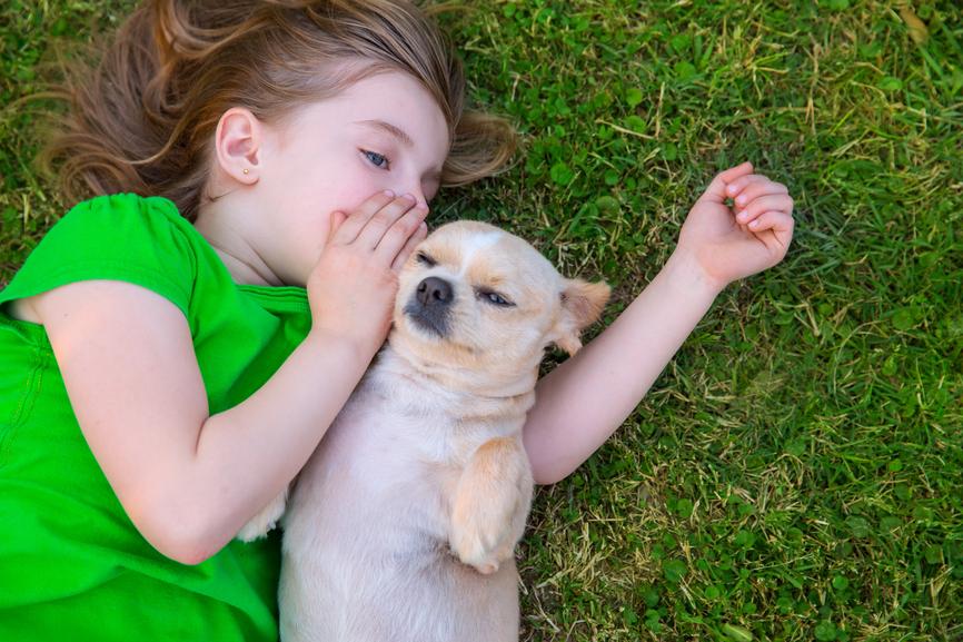 Child:Dog Etiquette.jpg