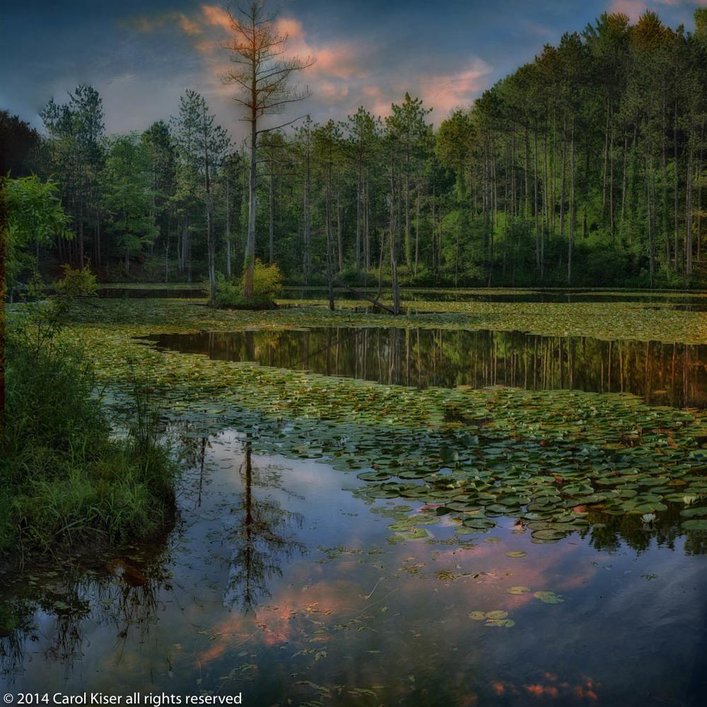 Summer evening at chapel lake.jpg