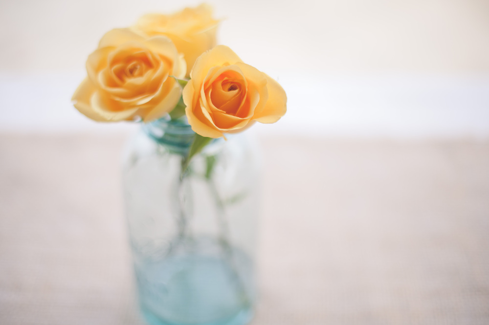 Ah, yellow roses.  I get it.  :D So beautiful!  There were also mason jars of baby's breath, burlap runners, and paper flowers in Texas State colors.  I was just too busy being chatty (and occasionally checking in on the kids) to take more photos!