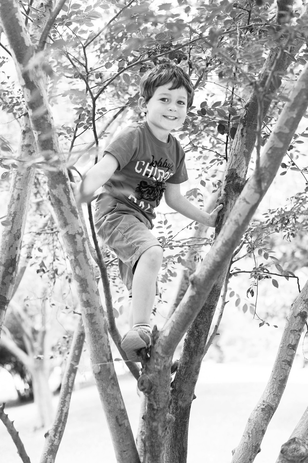 So happy in his old climbin' tree.
