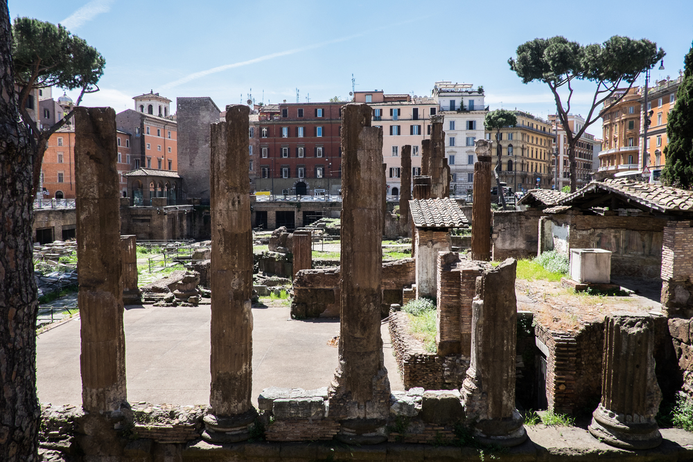 Area Sacra di Torre Argentina, very near where Brutus killed Julius Caesar.  Exact location is unknown.
