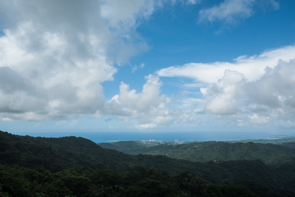View from atop an observation tower in El Yunque rain forest.