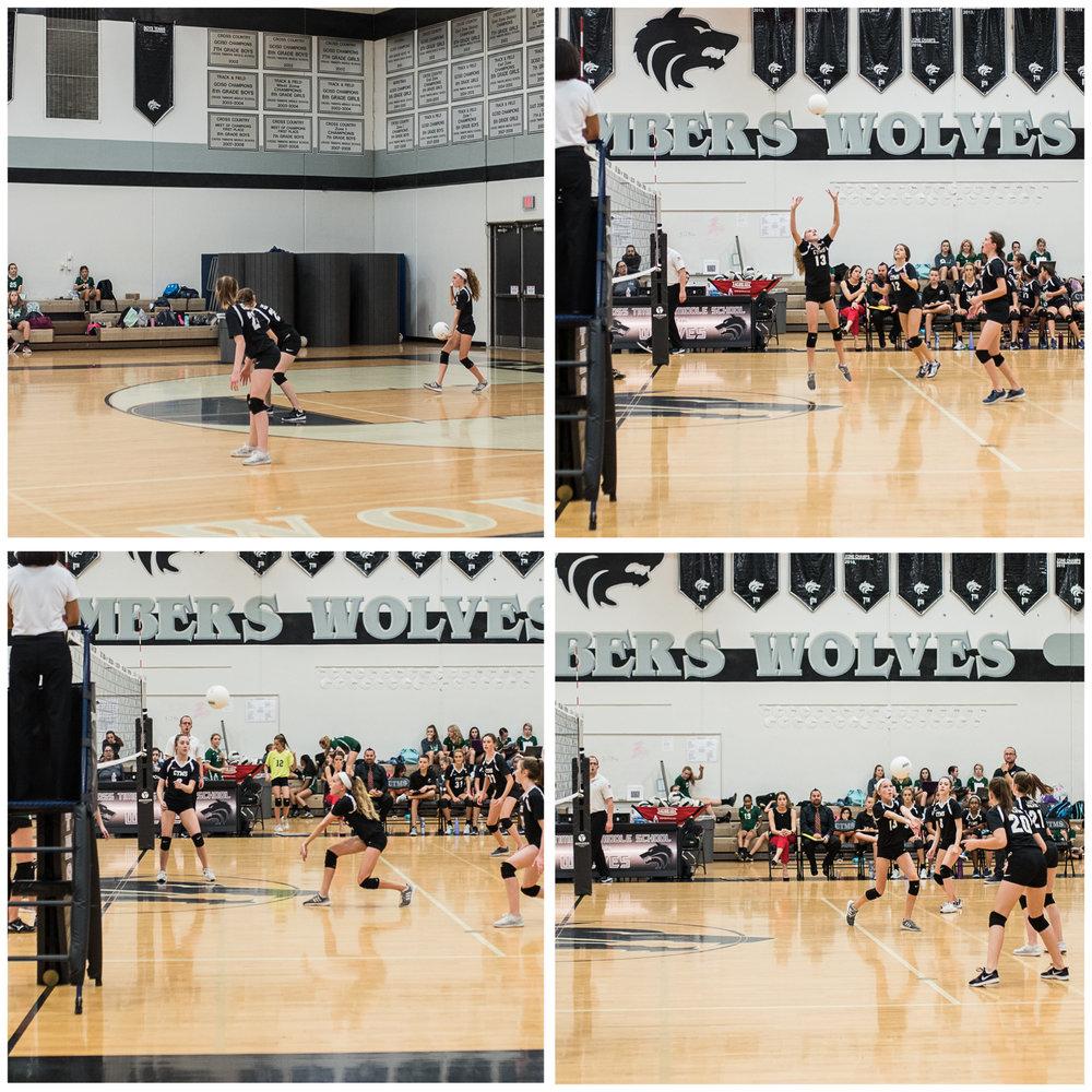 E volleyball.jpg