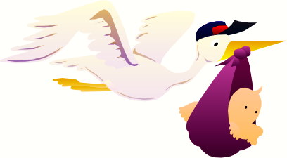 stork_delivery_baby_1.png