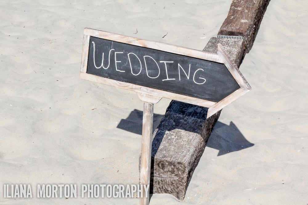SJ-Wedding-74.jpg
