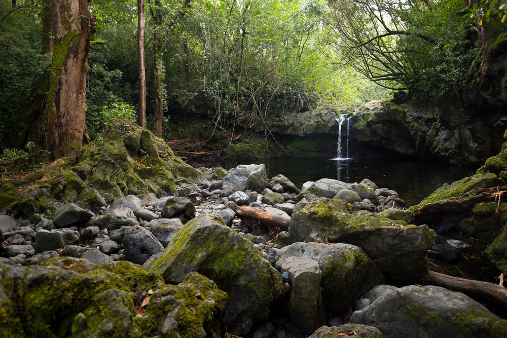 DSCF2717_Artisian Falls.jpg