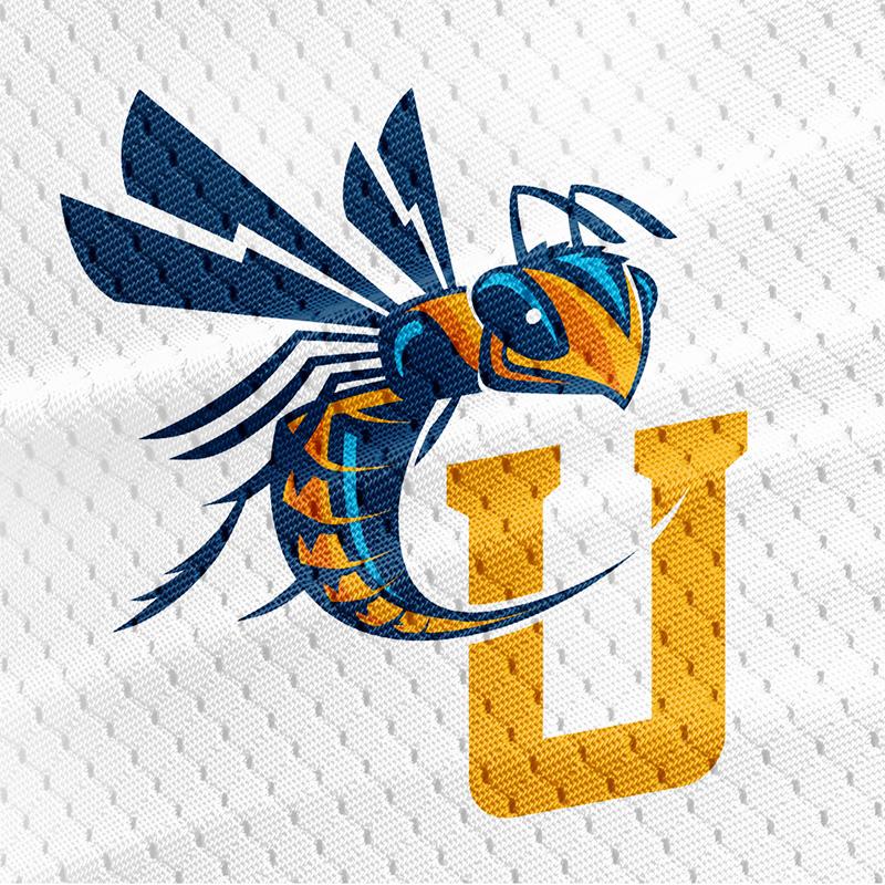 Cedarville_university_yellowjacket.jpg