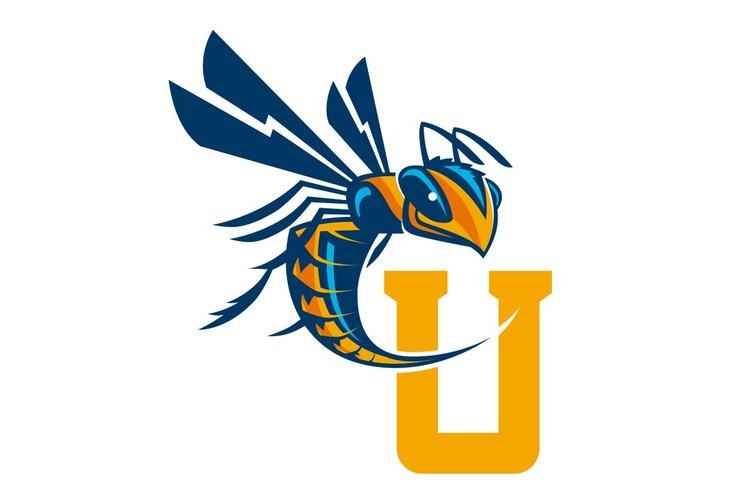cedarville university — slagle design