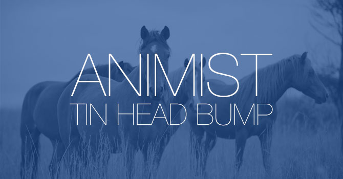 Animist - Tin Head Bump