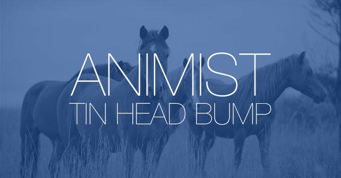 Animist - Tin Head Bump