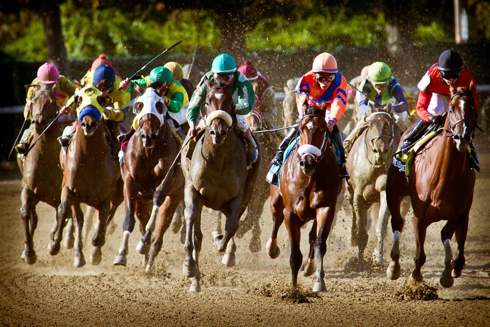 Race Five: TheBertram F. Bongard Stakes