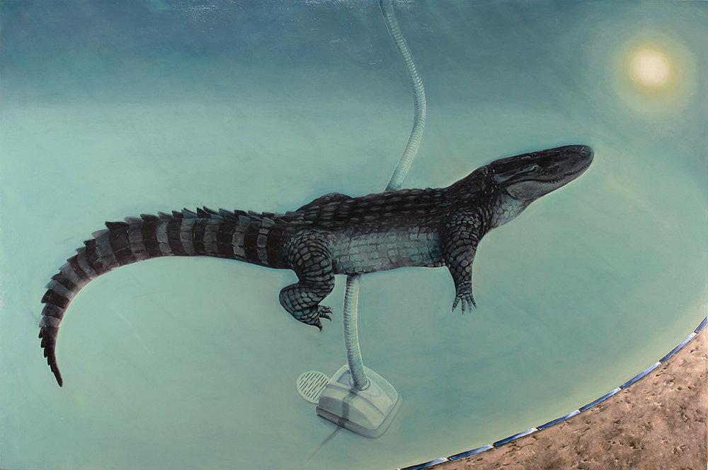 AlligatorinSwimmingPool.jpg