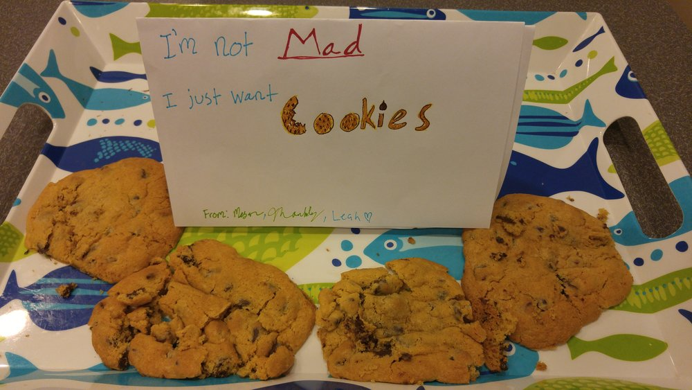 I'm not mad, I just want cookies.docx.jpg