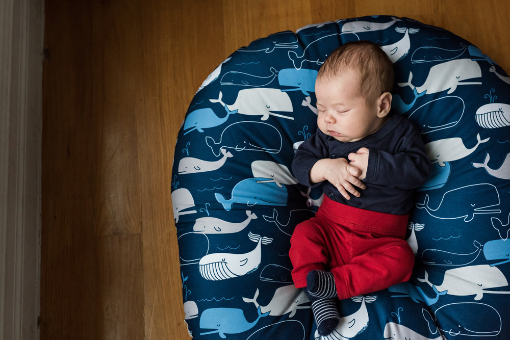 Brooklyn Newborn photographer-12162018_066.jpg
