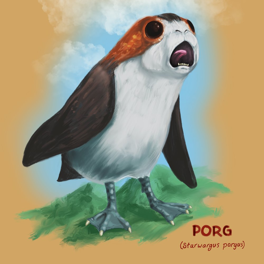 Everybody Loves Porgs