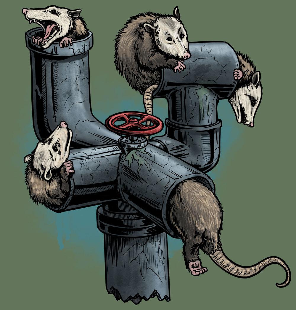 Possum Pipe