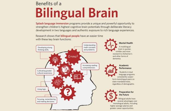 Dual language programs