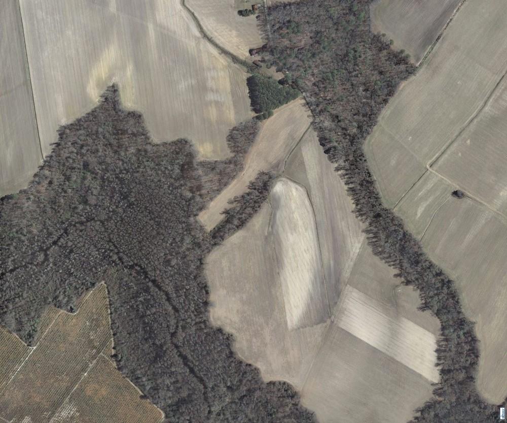 Aerial Fields
