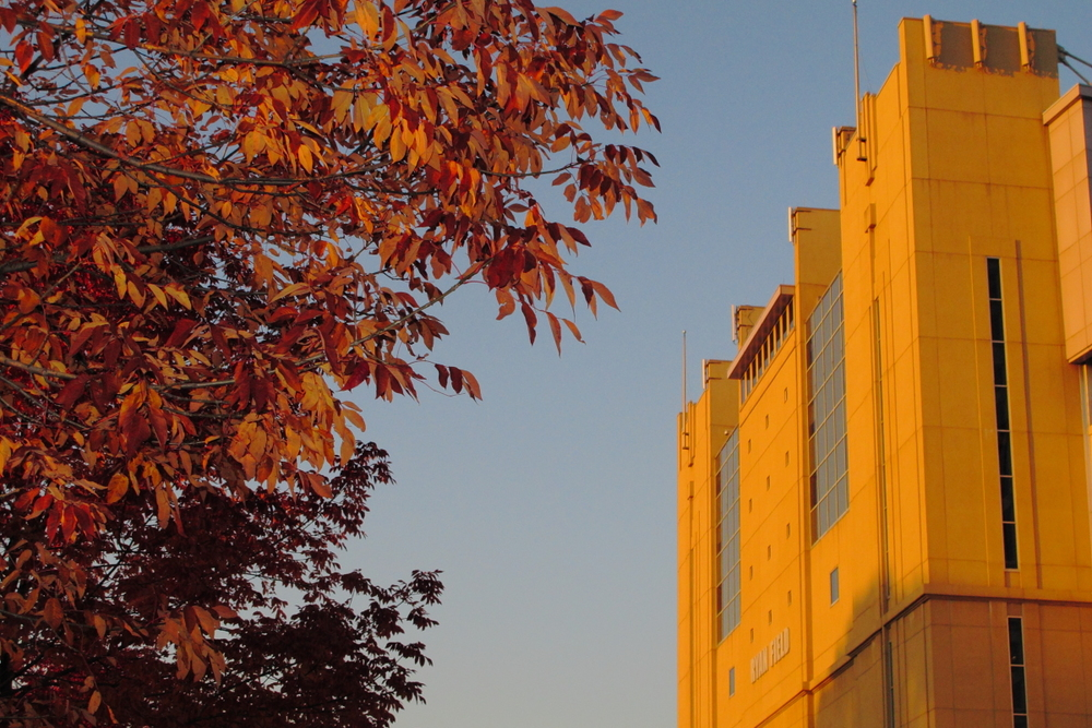 2011_10_08_Northwestern61.JPG