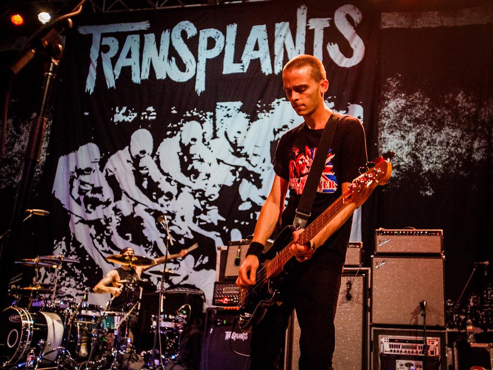 Transplants_002.jpg