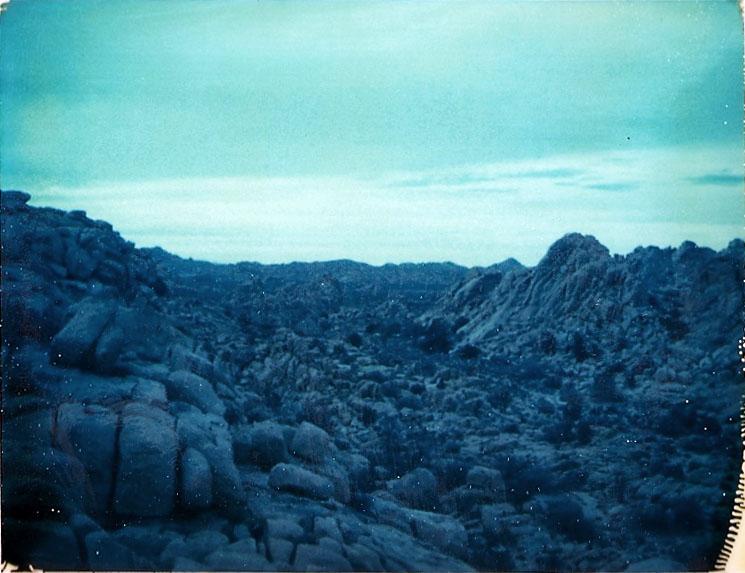 Josuha Tree Polaroid 7