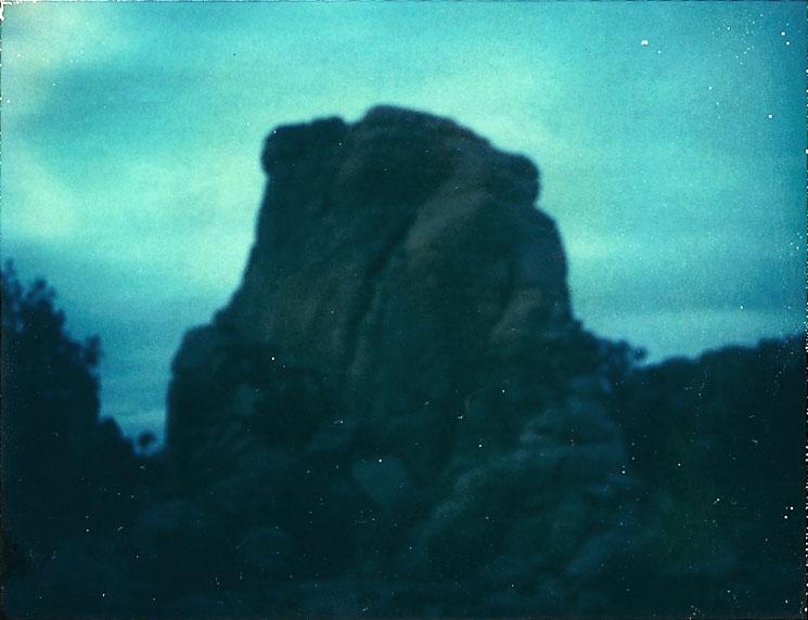 Josuha Tree Polaroid 5