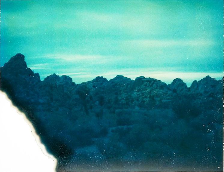 Josuha Tree Polaroid 14