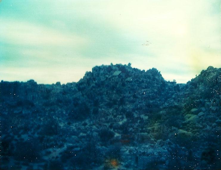 Josuha Tree Polaroid 10